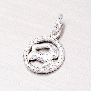 Stříbrný přívěsek - Kozoroh MPN5017-12
